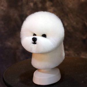 Model Dog head